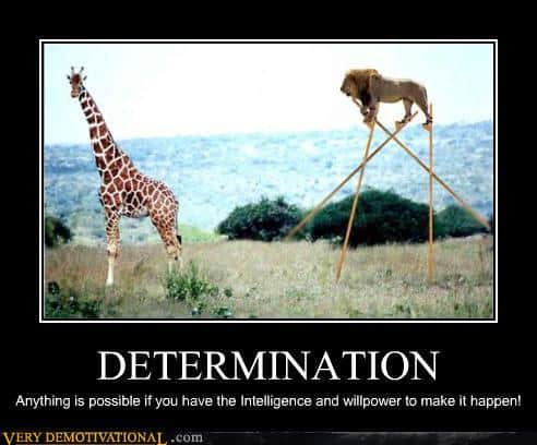 demotivational-posters-determination