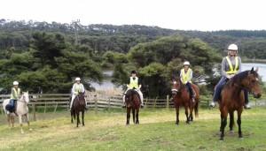 Horse riding 019