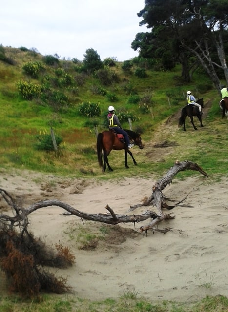Horse Riding – South Head to Murawai Beach – Nov 2013