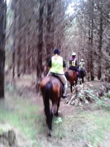 Horse riding 023