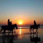 horse riding at walkworth